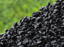 لزوم توجه به ذخایر زغالسنگ طبس