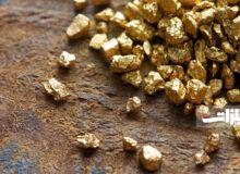تغییرات قیمتی بازار جهانی طلا