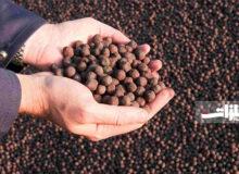 عرضه ۳۰ هزار تن گندله سنگآهن گلگهر در بورس کالا