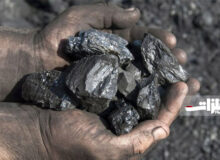 ۵۰ هزار تن سنگآهن کلوخه مجتمع سنگان در بورس عرضه شد