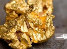 افزایش مجدد قیمت جهانی طلا