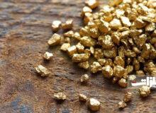 اول هفتهای پرتلاطم برای طلا