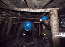 ۱۳۵ نفر از تعداد شاغلان معدنی کاسته شد