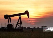 کرونا در جدال با نفت