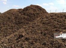 دادوستد ۱۷ هزار تن خاک روی در بورس