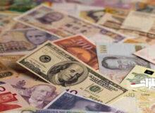 افزایش نرخ رسمی ۱۹ ارز
