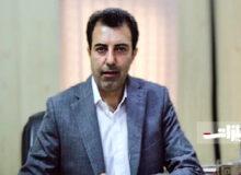 تامین برق اولویت اساسی منطقه ویژه خلیجفارس