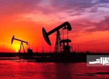 روند نزولی قیمت طلای سیاه
